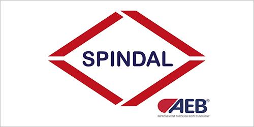 SPINDAL, Επαγγελματικός Οδηγός για τις Αμπελοοινικές Επιχειρήσεις